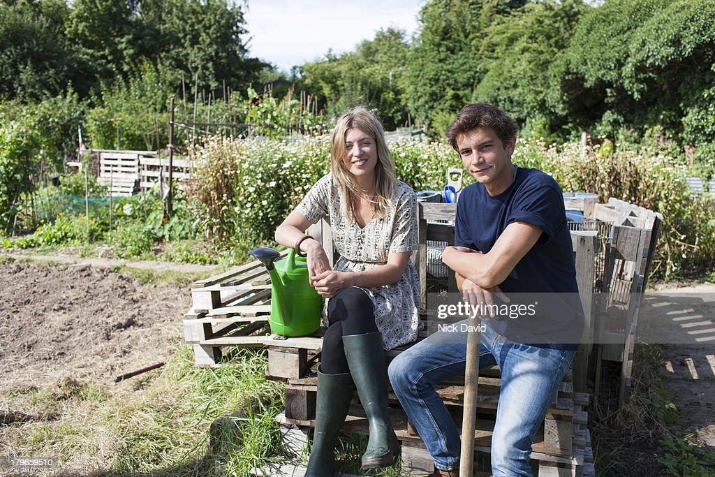 Working on an allotment : Stock Photo