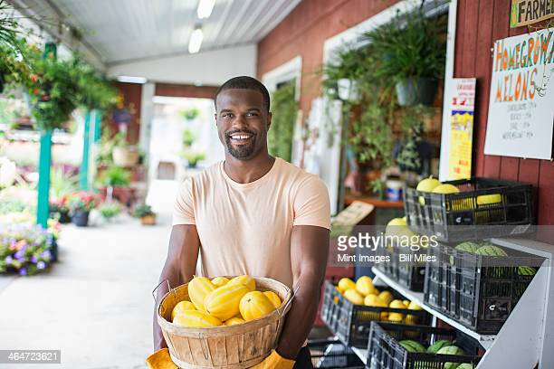 Working on an organic farm. A man carrying a large basket of yellow squash vegetables. Displays of fresh produce for sale.
