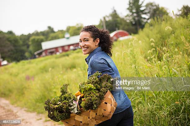 Working on an organic farm. A woman carrying a basket overflowing with fresh green vegetables,produce freshly picked.