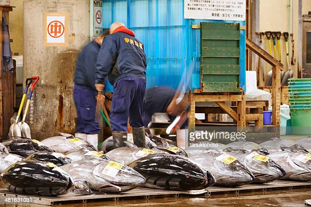 working on tuna at tsukiji fish market - bluefin tuna stock pictures, royalty-free photos & images