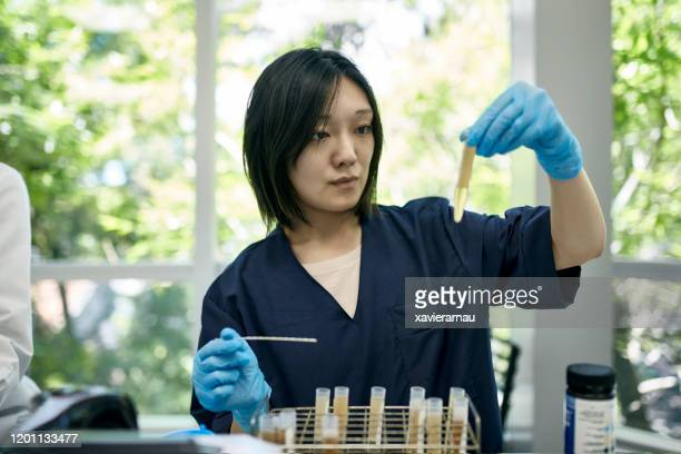 working portrait of japanese female lab technician - urine sample stock pictures, royalty-free photos & images