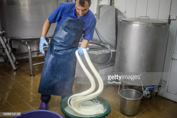 Working process of brine string cheese production on the Dooobra ferma farm Dooobra ferma is a dairy farm in Kiev region specialized on handcrafted...