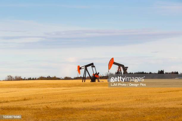 working pumpjacks in the middle of a golden wheat field, post harvest - hydrocarbon stock pictures, royalty-free photos & images