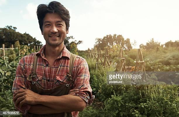 die dieses land ist ein labor der liebe - asian farmer stock-fotos und bilder