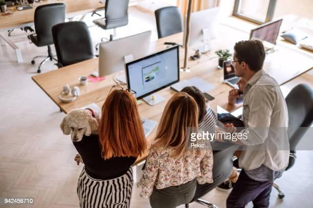 lavorare insieme in pet friendly environment - hot desking foto e immagini stock