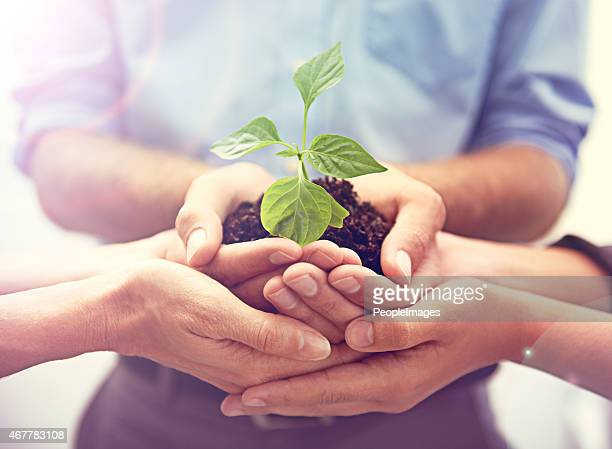 working together towards a greener tomorrow - responsible business stock photos and pictures