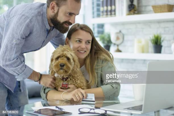 Travail avec chien