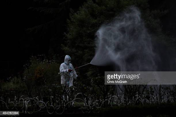 Workman sprays pesticide in Yoyogi Park on August 28, 2014 in Tokyo, Japan. Sections of Yoyogi Park were closed to the public today as they underwent...