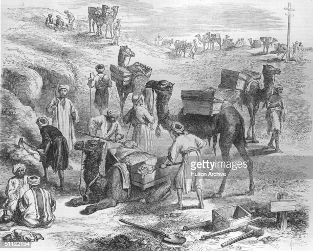 Workmen load soil onto dromedaries during the construction of the Suez Canal 1869