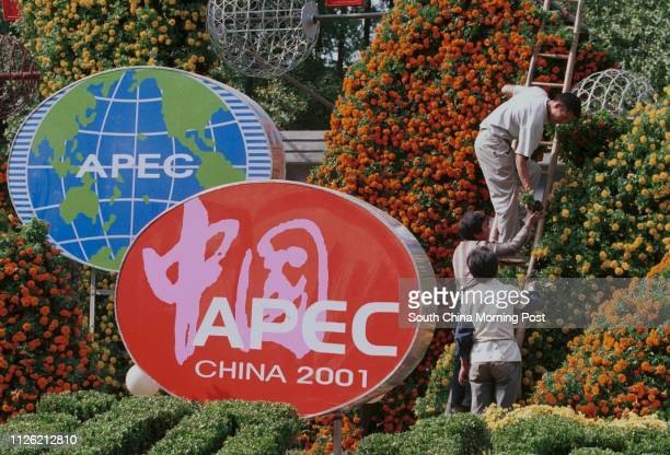 Workmen put the finishing touches on a floral display next to logos of APEC in the French Concession area promoting the AsiaPacific Economic...