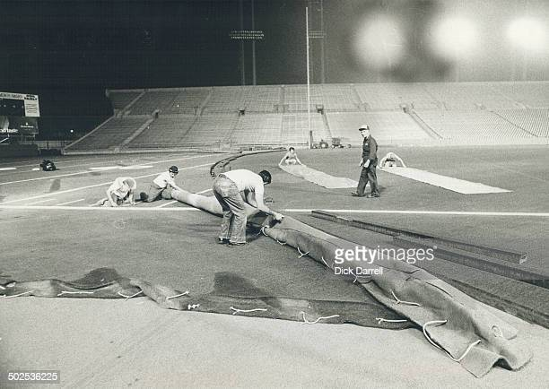 Workmen roll down the artificial turf at Toronto's Canadian National Exhibition stadium which has 160396 square feet of it The stadium manager says...