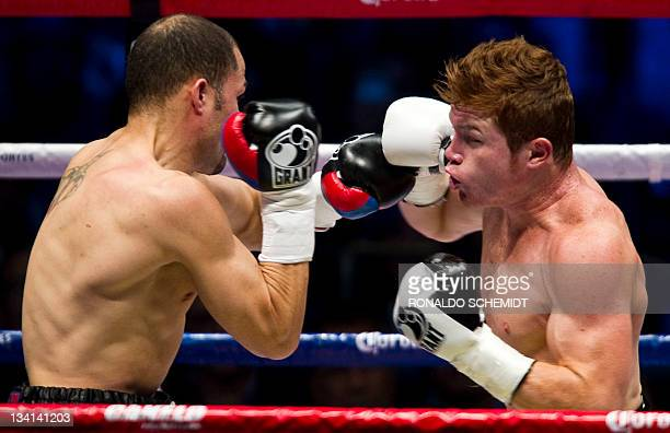 World Boxing Council SuperWelterweight Championship title holder Mexican Saul Canelo Alvarez fights with Puerto Rican boxer Kermit Cintron during...