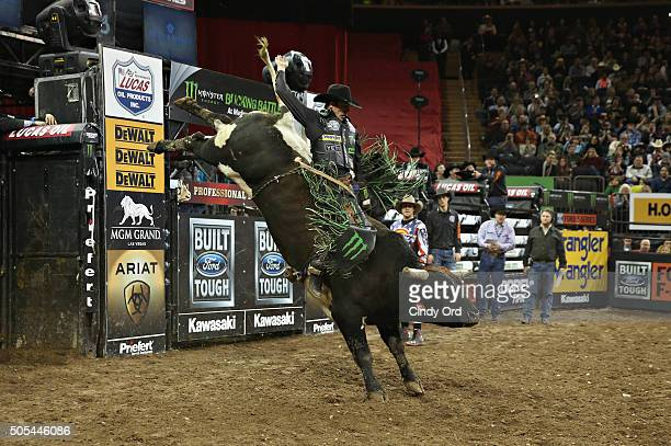 World Champion JB Mauney rides during PBR's 10th Anniversary Monster Energy Buck Off at the Garden at Madison Square Garden on January 17 2016 in New...
