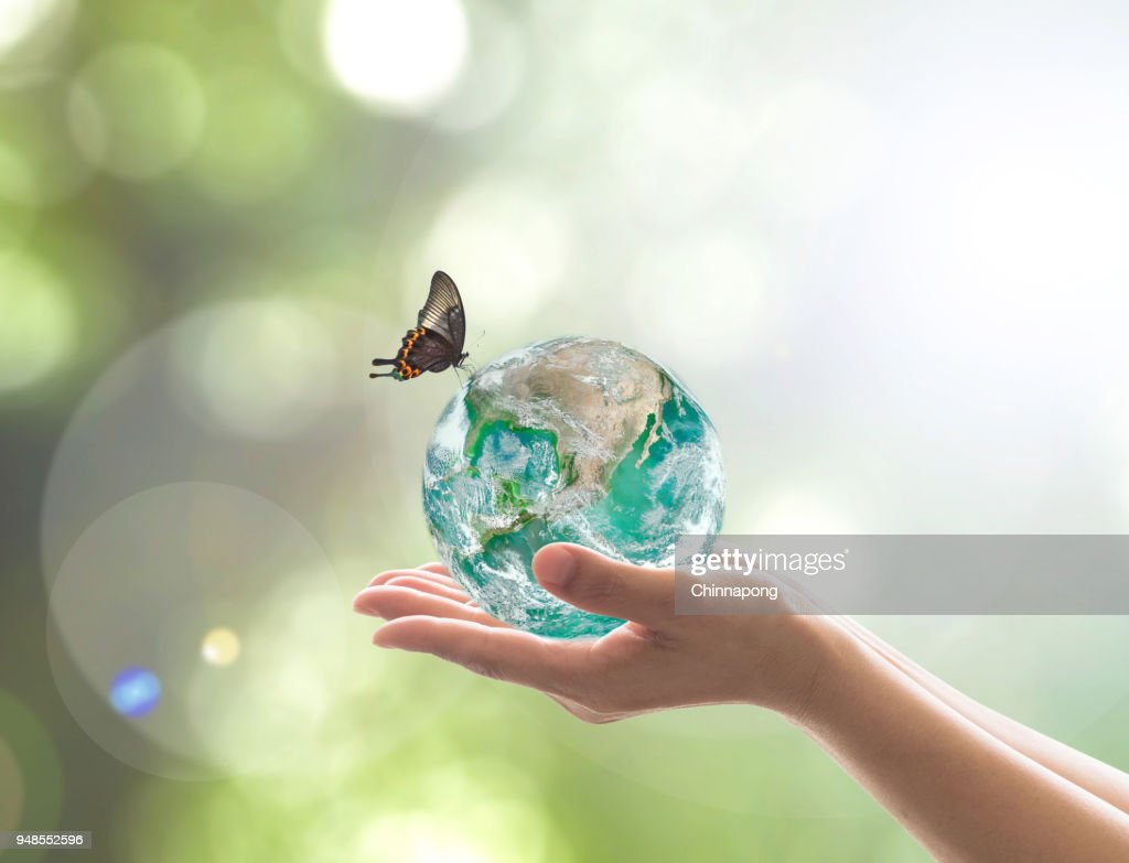 World environment day and environmental eco friendly concept with green earth on volunteer's hands. Element of image furnished by NASA : Stock Photo