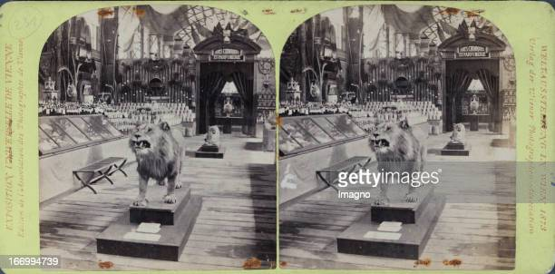 French Gallery Algier Publisher of the Vienna Photographers Association Stereo photograph Weltausstellung Wien 1873 Französische Galerie Algier...