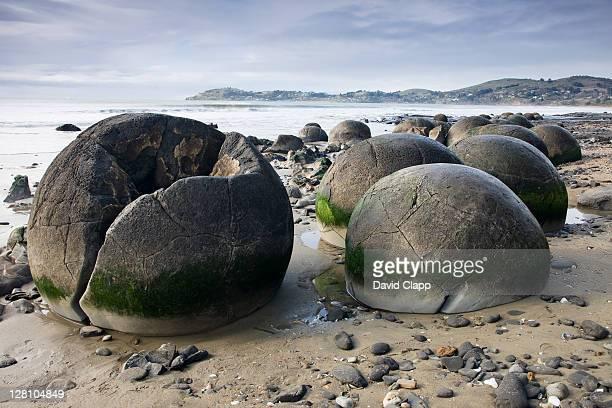 world famous moeraki boulders: almost spherical rock formation found on koekohe beach on wave cut otago coast between moeraki and hampden, south island, new zealand - 方解石 ストックフォトと画像