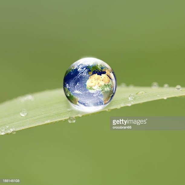 world globe drop on green leaf