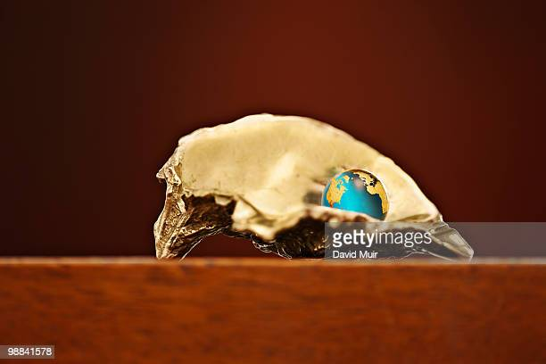 world globe in a gold oyster shell on a wood surfa