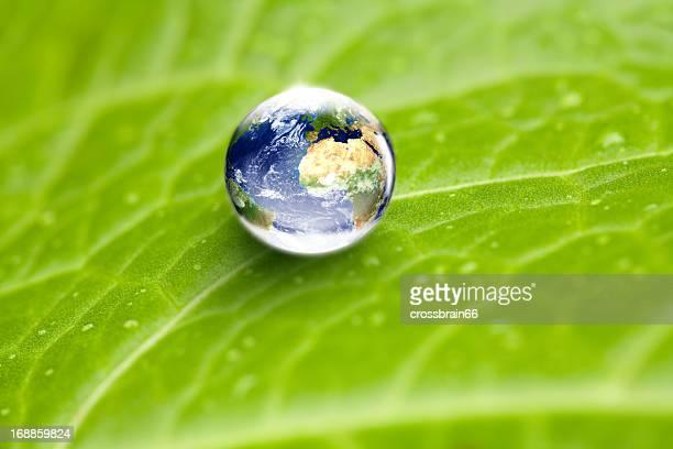 世界水ドロップ世界中の緑の葉