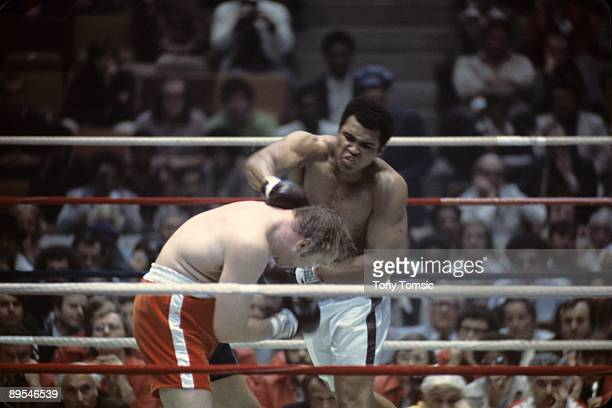 World heavyweight champion boxer Muhammad Ali lands a right hand on the side of the head of challenger Chuck Wepner during a heavyweight title fight...