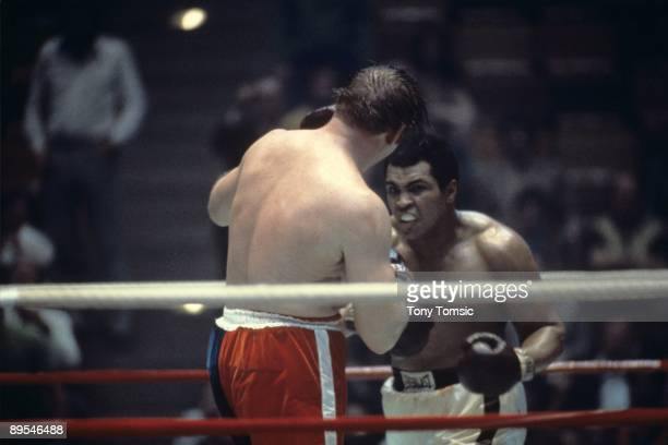 World heavyweight champion boxer Muhammad Ali looks for an opening in the defense by challenger Chuck Wepner during a heavyweight title fight on...