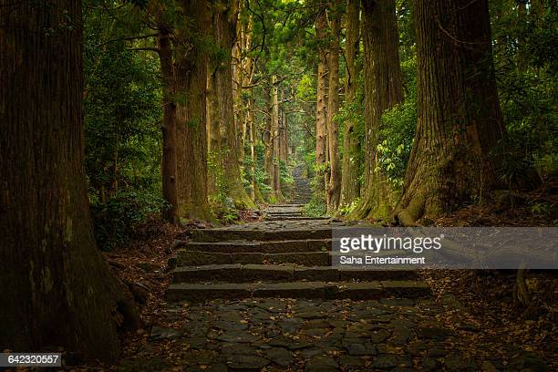 world heritage kamano kodo - präfektur wakayama stock-fotos und bilder