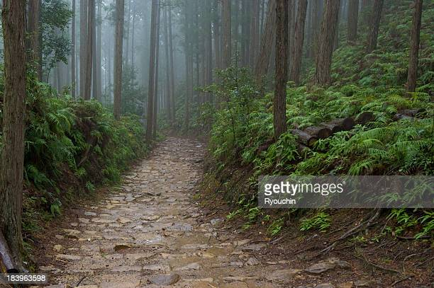 World heritage of Japan,Kumano old road