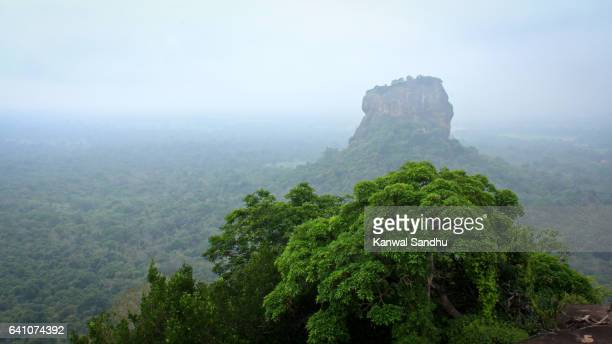 world heritage sigiriya rock fortress and pidurangala rock gulfed by fog - sigiriya stock photos and pictures