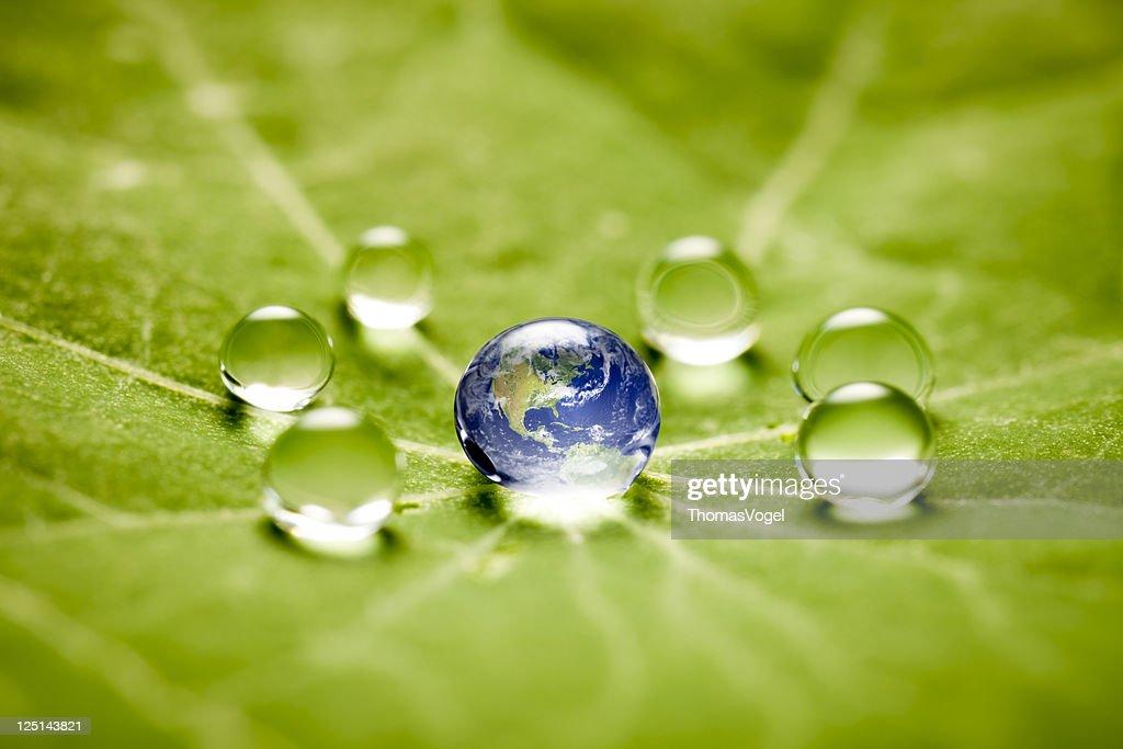 World in a drop macro : Stock Photo
