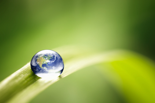 World in a drop - Nature Environment Green Water Earth 125143761