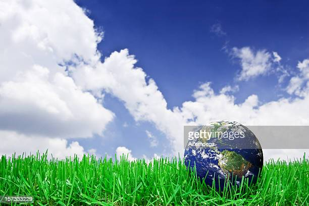 Welt in Gras