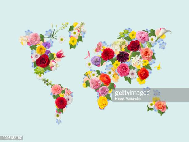 world map made from a collage of flower petals and leaves. - 金融と経済 ストックフォトと画像