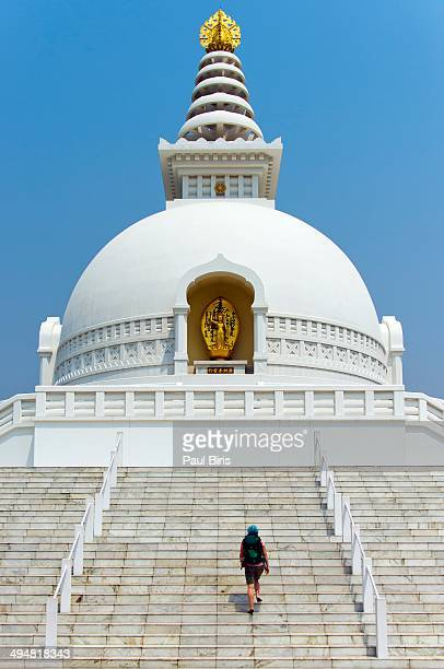 world peace pagoda in lumbini - terai stock pictures, royalty-free photos & images