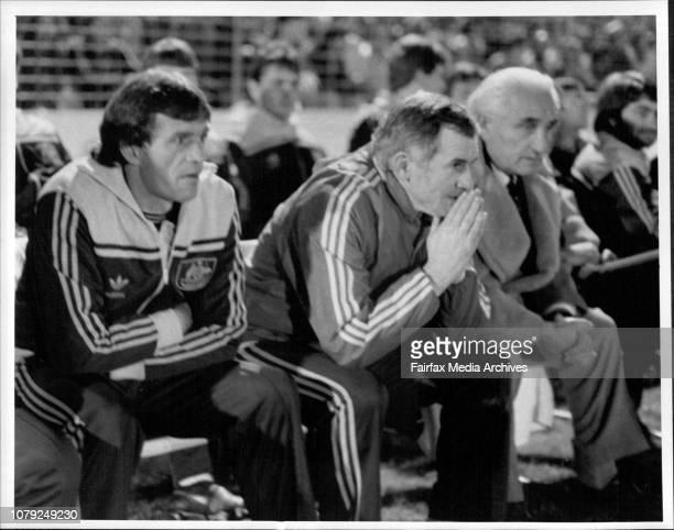World Soccer series at Barton Park tonightAustralia Vs Iraklis Abony Aroil Lederer June 21 1984