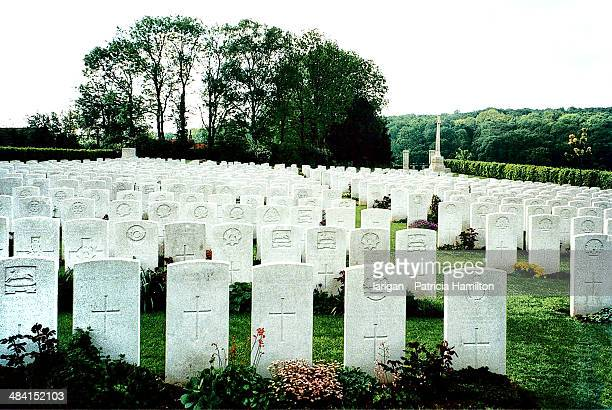 world war 1 centenary - cemetery stock pictures, royalty-free photos & images