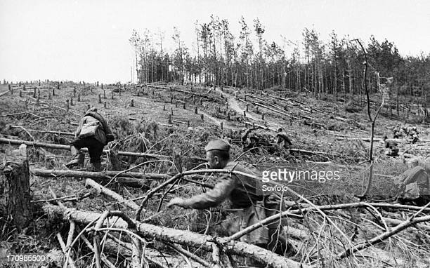 World war 2 may 1942 the kharkov direction advancing red army men overcoming a barrier of felled trees