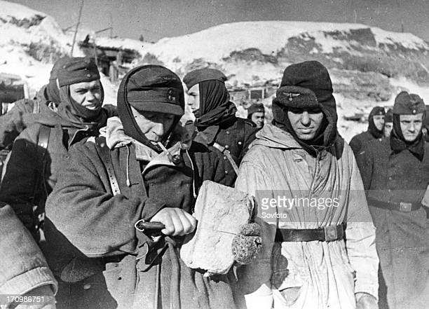 World war 2 stalingrad ussr february 1943 nazi soldiers taken prisoner near stalingrad