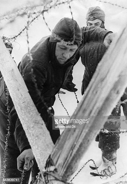 World War - Eastern Front, Soviet Union: German soldier setting up a barrier of barbed wire in the snow - 1943- Photographer: Presse-Illustrationen...