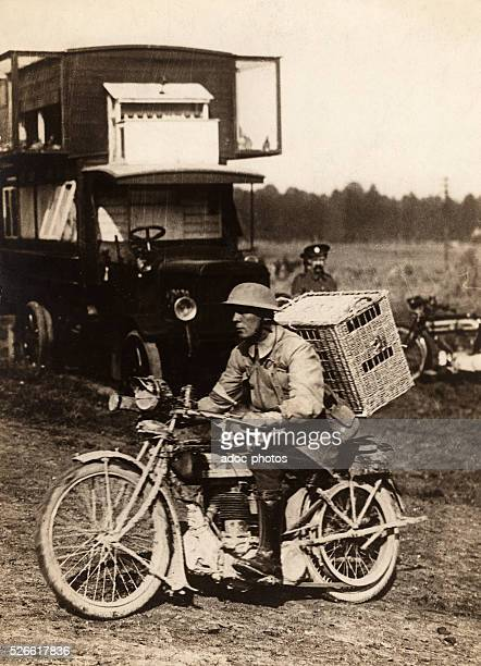 World War I A biker taking some carrierpigeons to the front Ca 1915