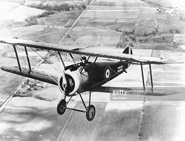 World War I allied fighter plane Sopwith F1 'Camel' English manufactured Photograph