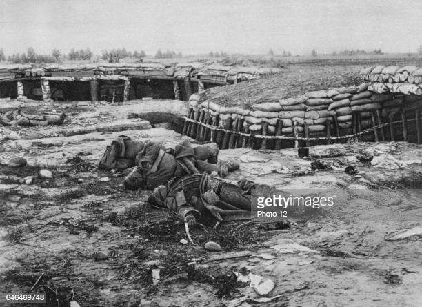 Eastern Front Russian soldiers abandoned in the face of German advance through Poland Battlefield Trench Soldier Dead Body
