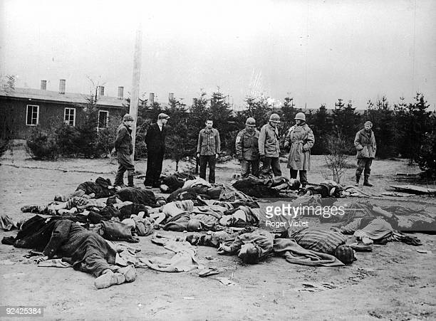 World War II Americans and survivors looking at the last victims of the Ohrdruf concentration camp
