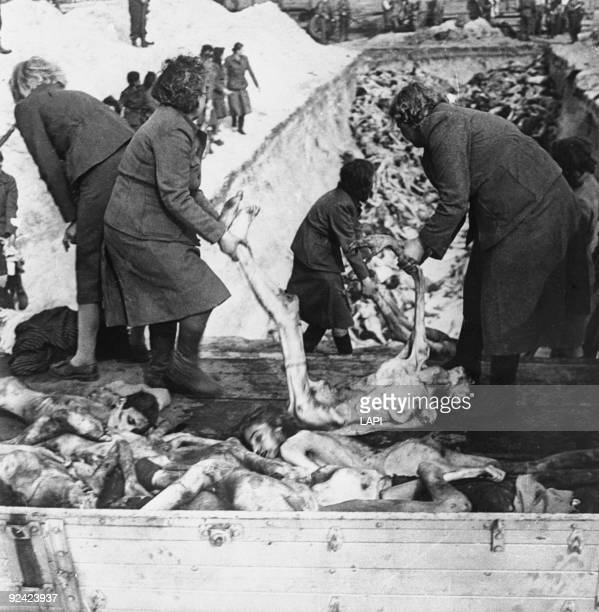 World War II BergenBelsen concentration camp SS women taking away their victims from trucks to put them in a common grave under the surveillance of...