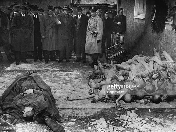World War II Buchenwald concentration camp Visit of a comittee of the American Congress sent by General Eisenhower