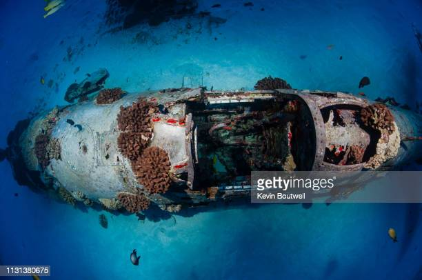 world war ii era corsair plane wreck off the coast of oahu, hawaii - submarine photos stock pictures, royalty-free photos & images