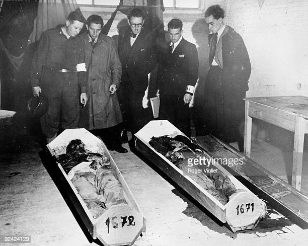 World War II Liberation of Belgium September 1944 Belgian collaborators murdered by their Nazi bosses in Liege discovered in a common grave among 500...