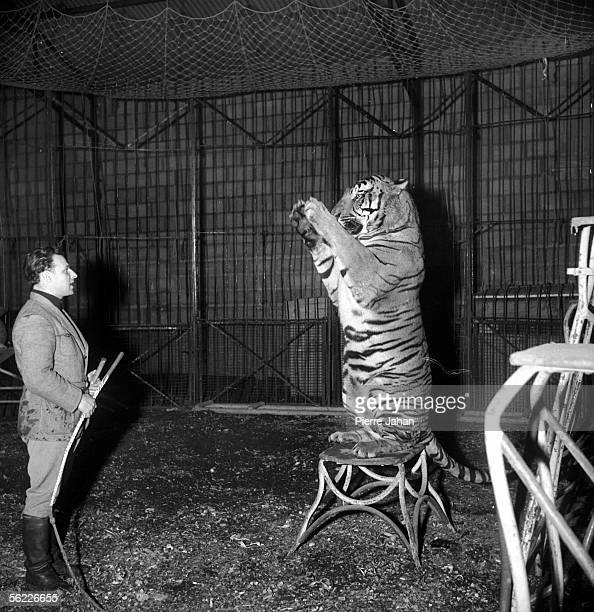 World War II Occupation The Amar circus put away in a farm near Blois Taming of a tiger 1941