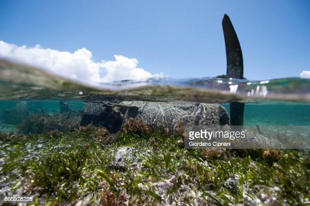World War II plane wreck.