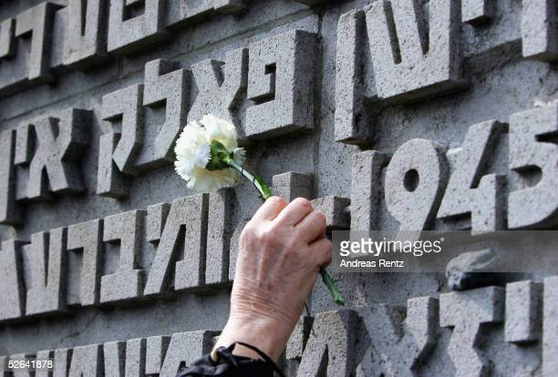 World War II veteran places a flower at the inscribed memorial wall during a commemoration service in the former concentration camp Bergen-Belsen,...