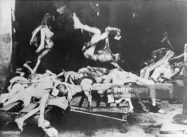 World War II, Warsaw Ghetto during the German occupation: dead bodies are carried off